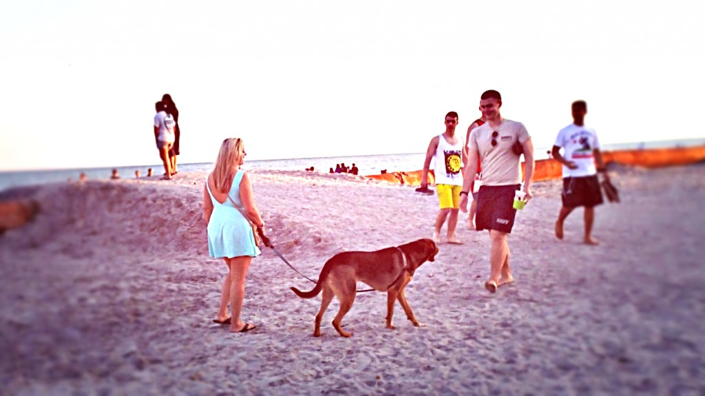 folly beach jewish singles Find meetups in folly beach, south carolina about social and meet people in your local community who share your interests.