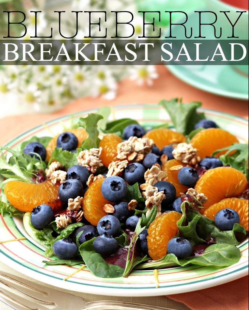 BC-IC-12 Blueberry Breakfast Salad