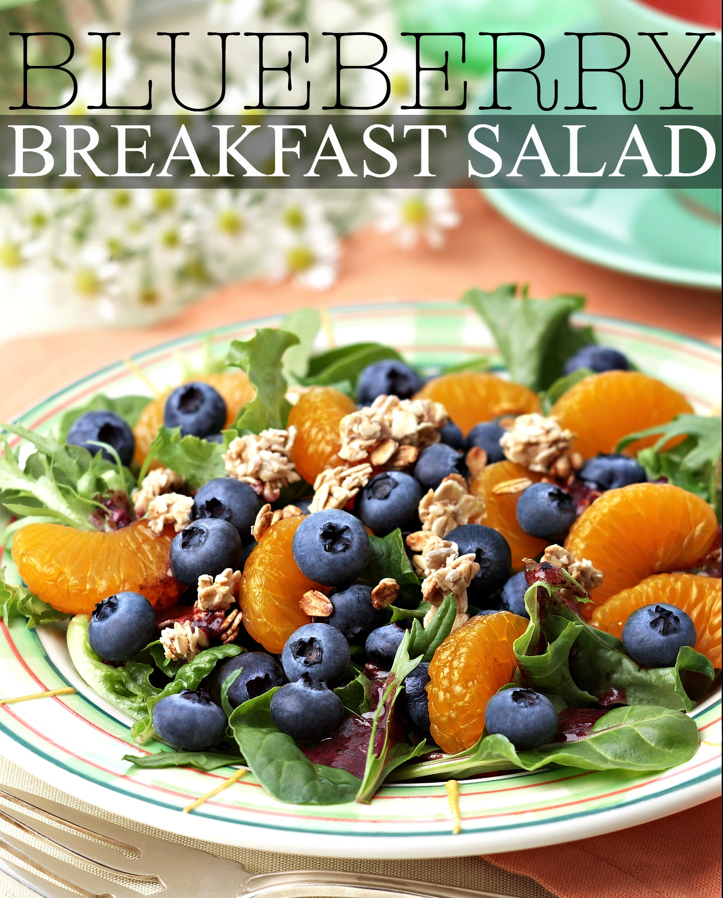 Red White & Blueberry Recipes: Blueberry Breakfast Salad