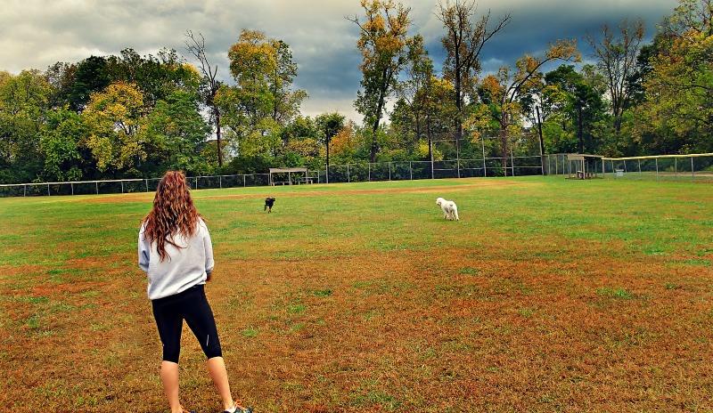 Dog Leg Park Dayton Ohio