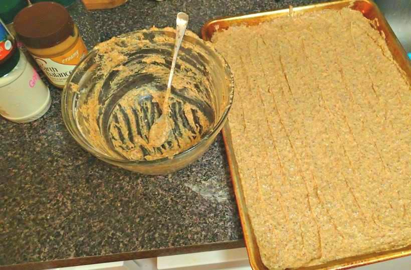 Superfood Dog Treat Recipe Simply Taralynn