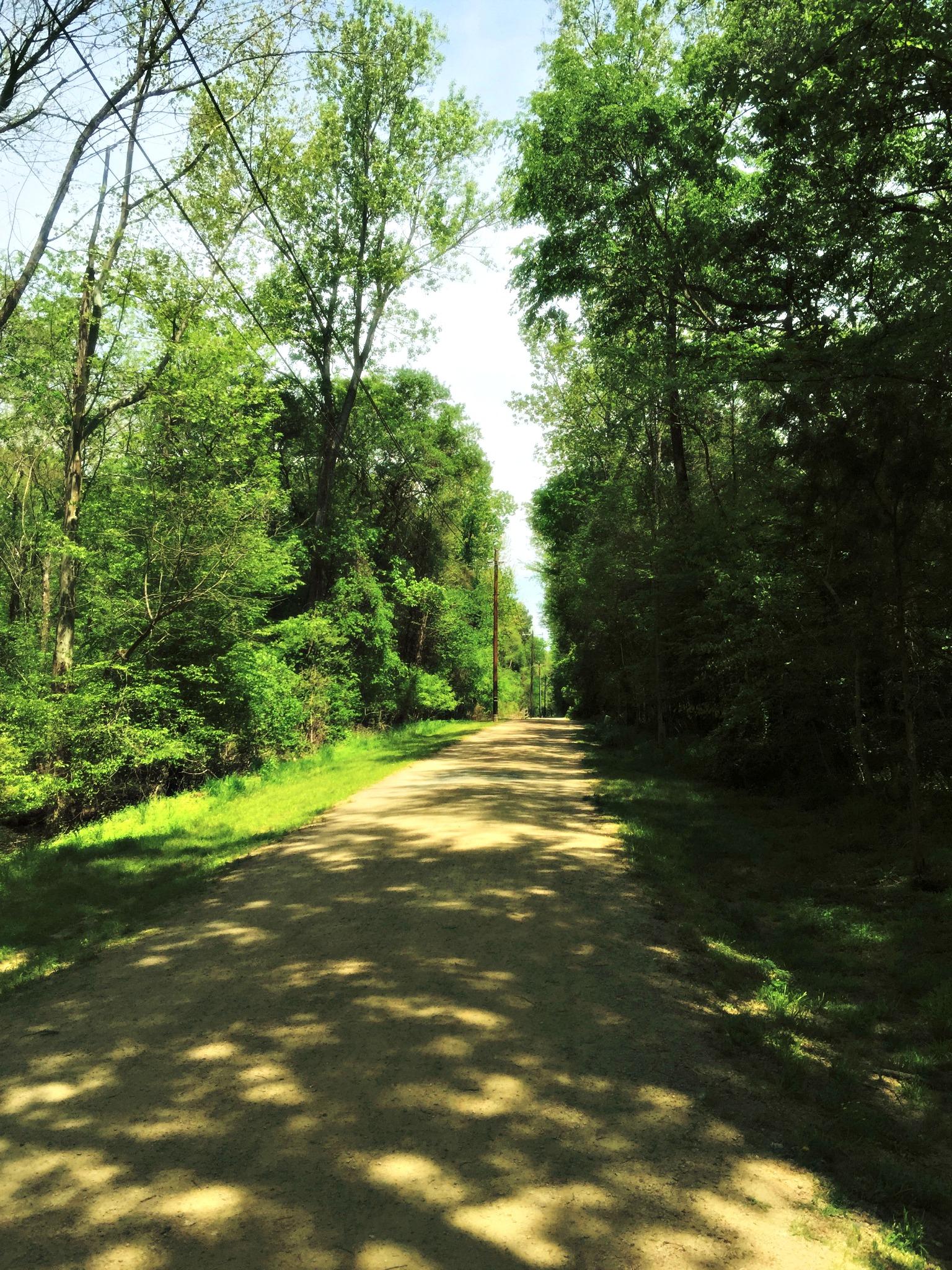 McMullen Creek Greenway Trail Charlotte NC
