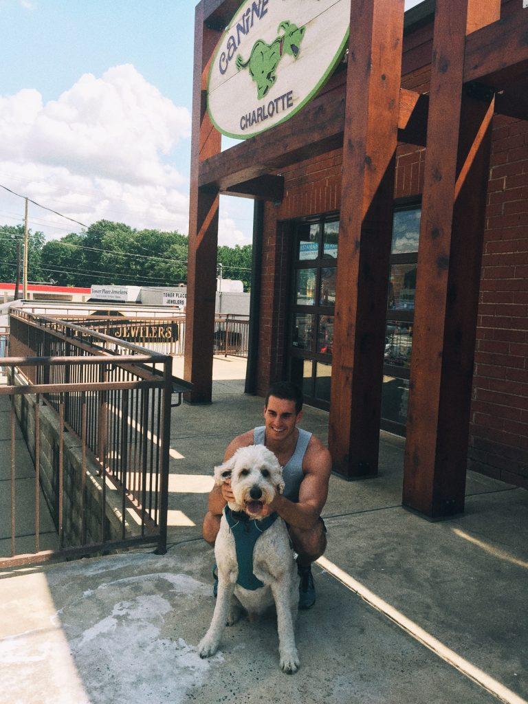 canine cafe charlotte