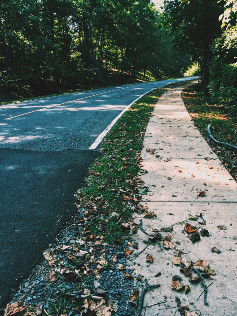 afternoon walk