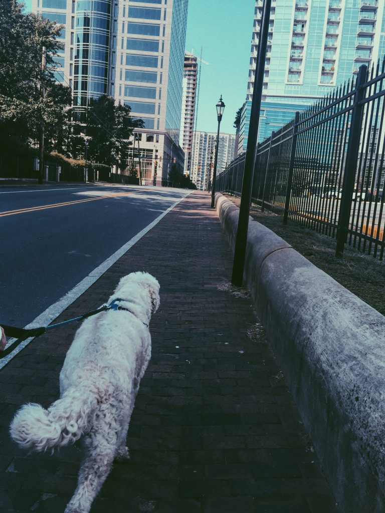 Uptown Walk With Grumples