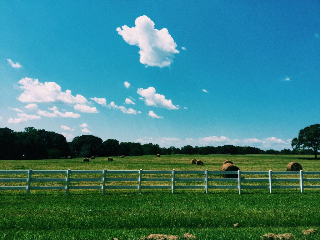 fort mill sc ann springs