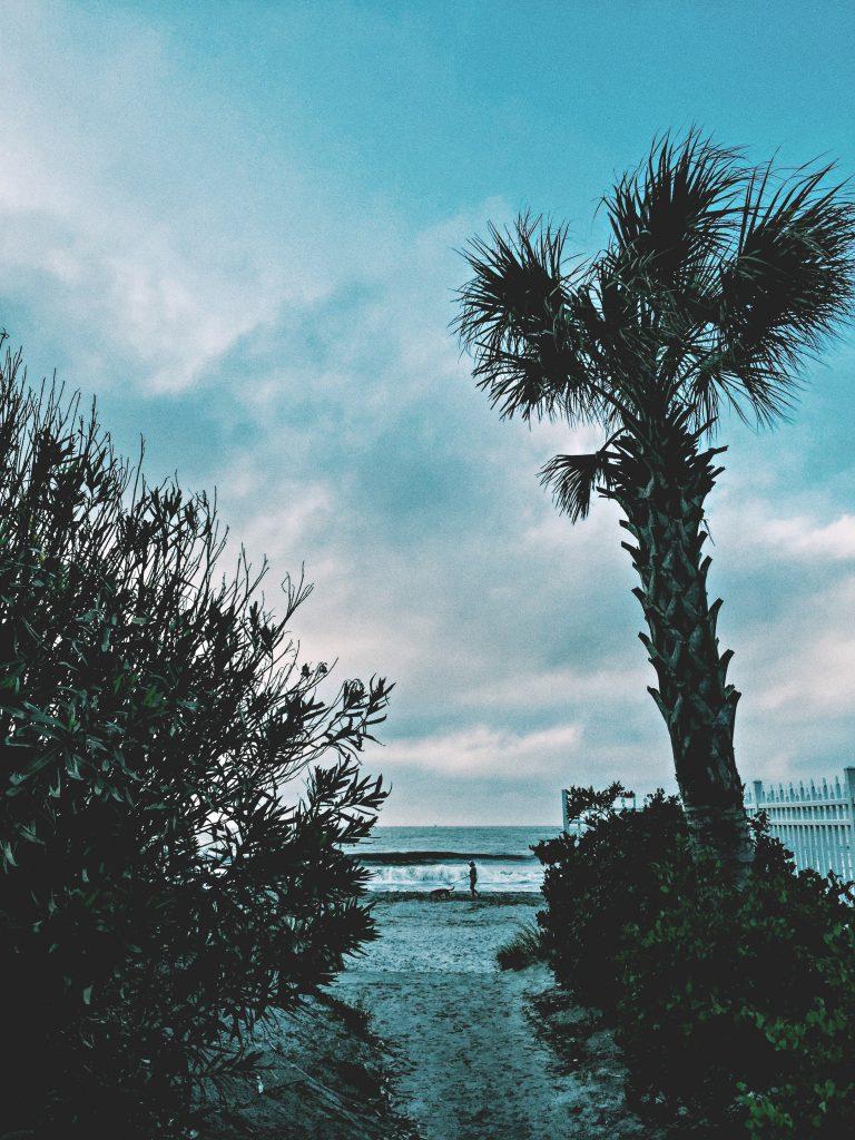 6:30 AM @ FOLLY BEACH