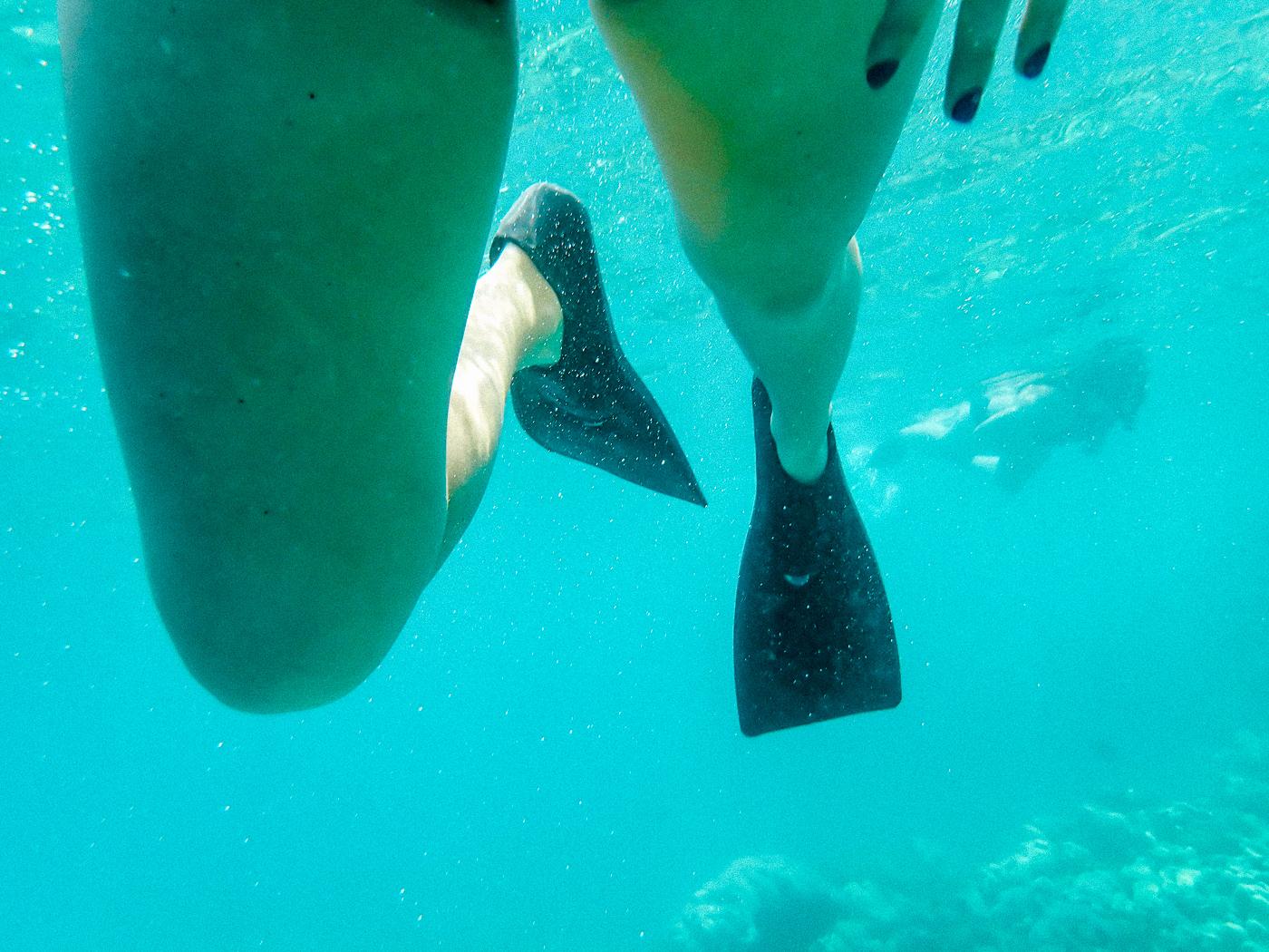 Snorkeling Captain Cook The Big Island Hawaii