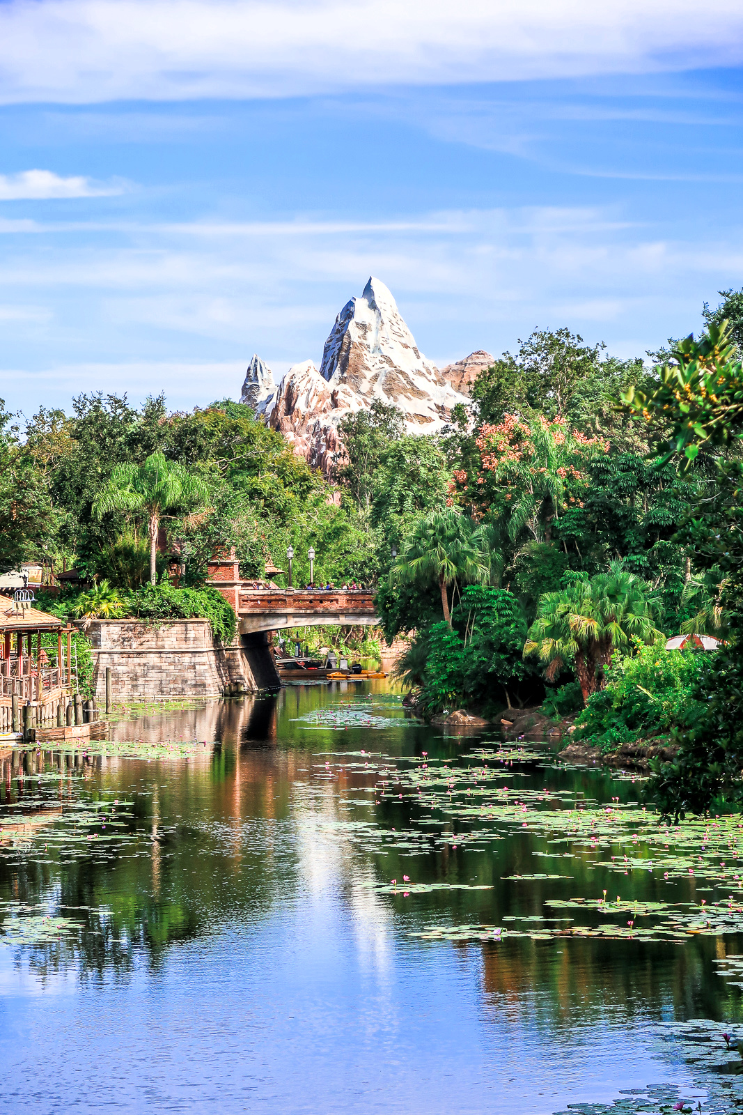 Disney's Animal Kingdom Travel Guide Eats Food Everest Expedition