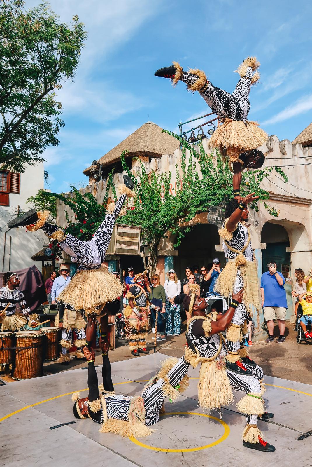 Disney's Animal Kingdom Travel Guide Eats Food Harambe Acrobats