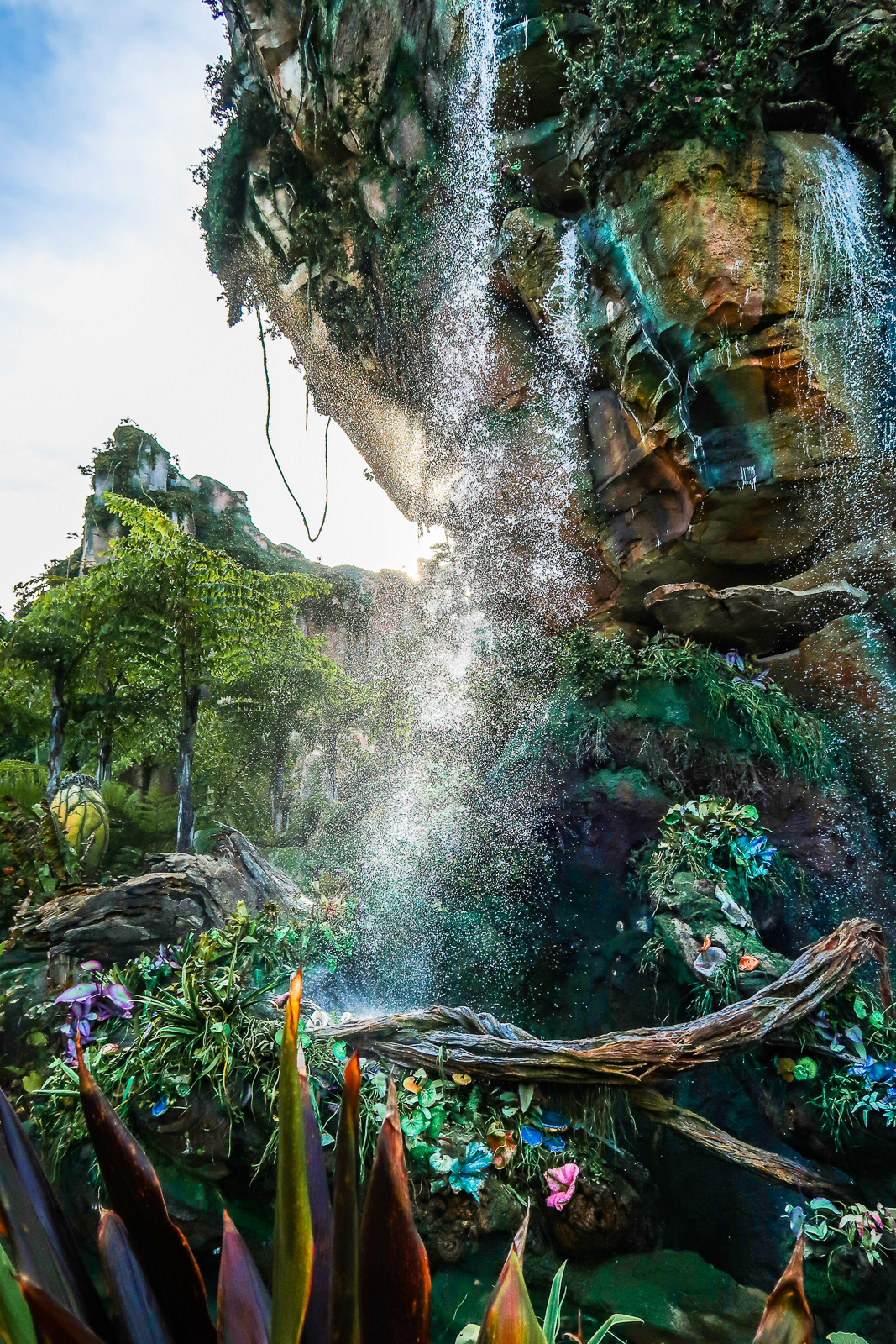 Insta-worthy Instagramable Spots Walls Disney World Animal kingdom