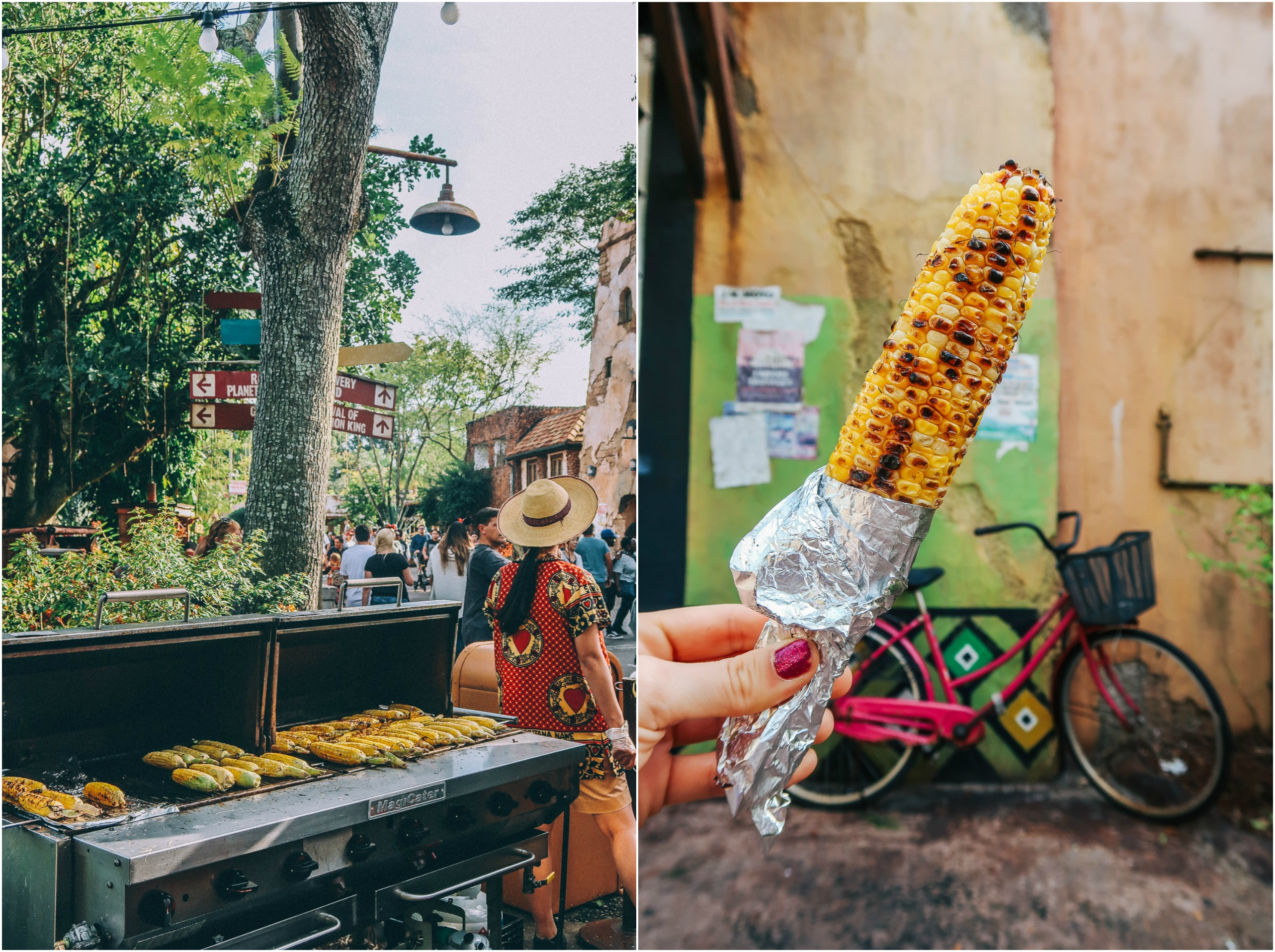 Disney's Animal Kingdom Travel Guide Eats Food Grilled Corn Vegan Eats Healthy
