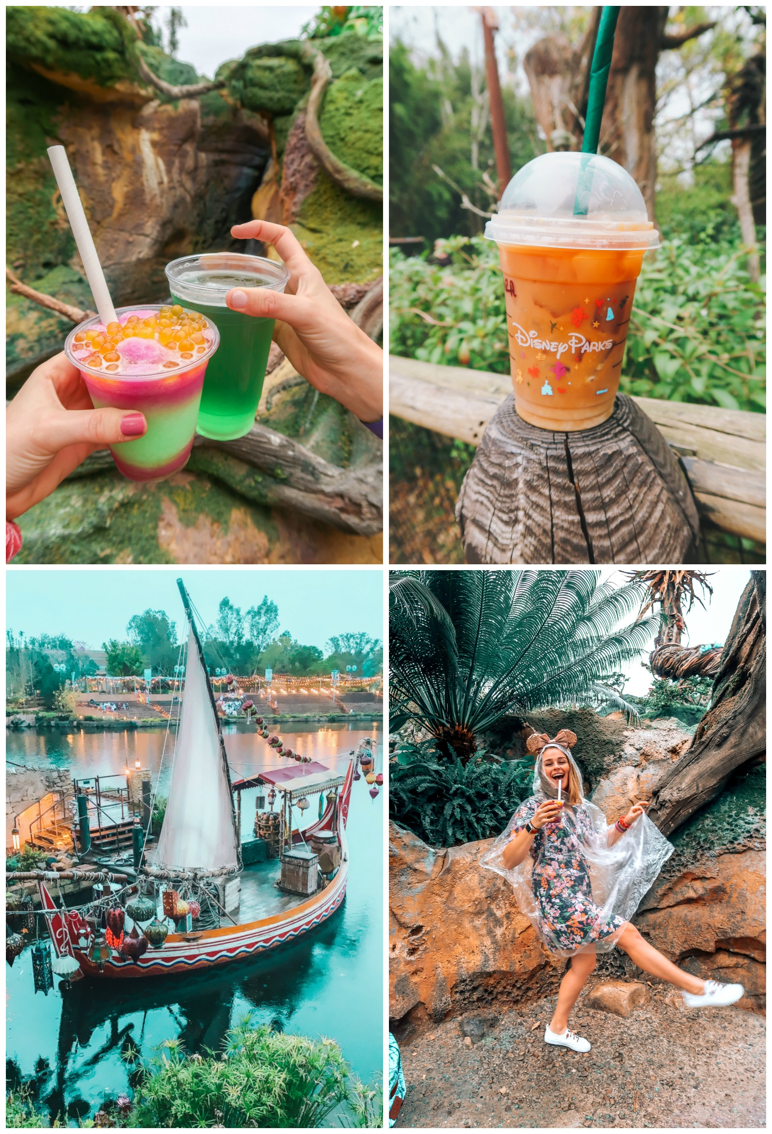 Itinerary Walt Disney World animal kingdom avatar coffee