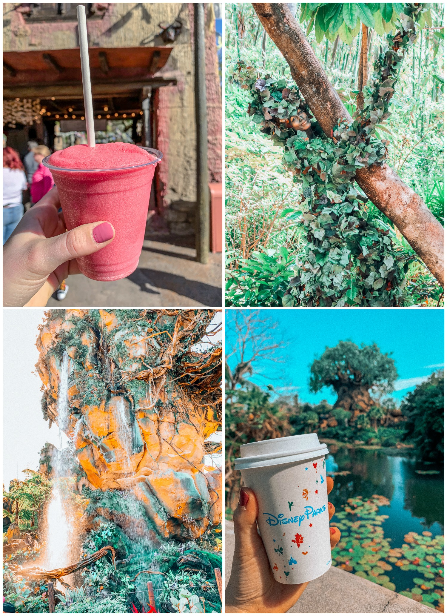 Itinerary Walt Disney World Animal Kingdom Nomad Lounge coffee mount Everest thirsty river