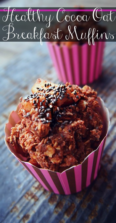 Healthy Cocoa Oat Breafast Muffins – Only 103 Calories & Full of Nutrients!