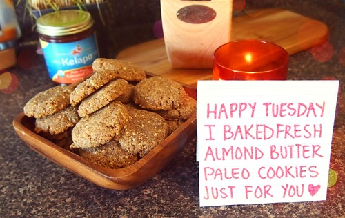 Paleo Almond Butter Cookies with Only 3 Grams of Carbs!