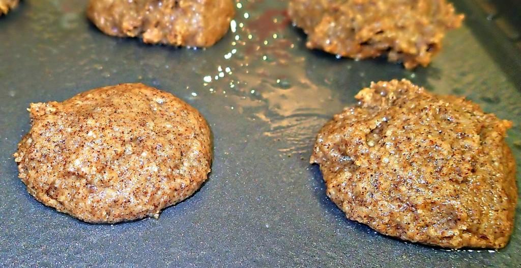 Paleo Almond Flour Snickerdoodles