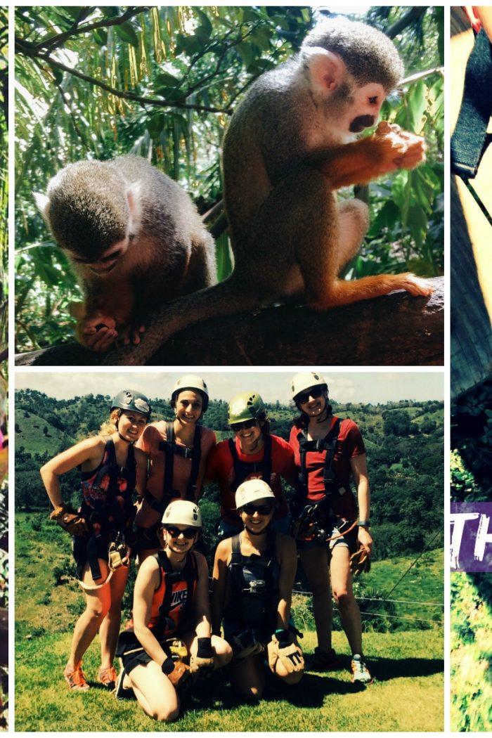 Monkey Jungle: Zip Lining, Bat Caves & Monkeys!