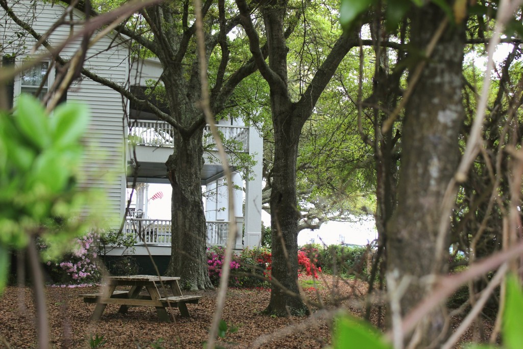 Southport North Carolina safe haven