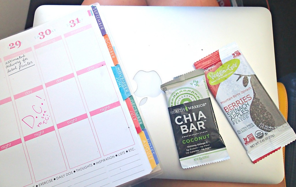 erin condren planner traveling chia bar