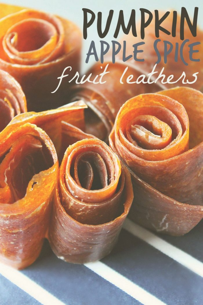 Pumpkin Apple Spice Fruit Leathers : Fall Snacking
