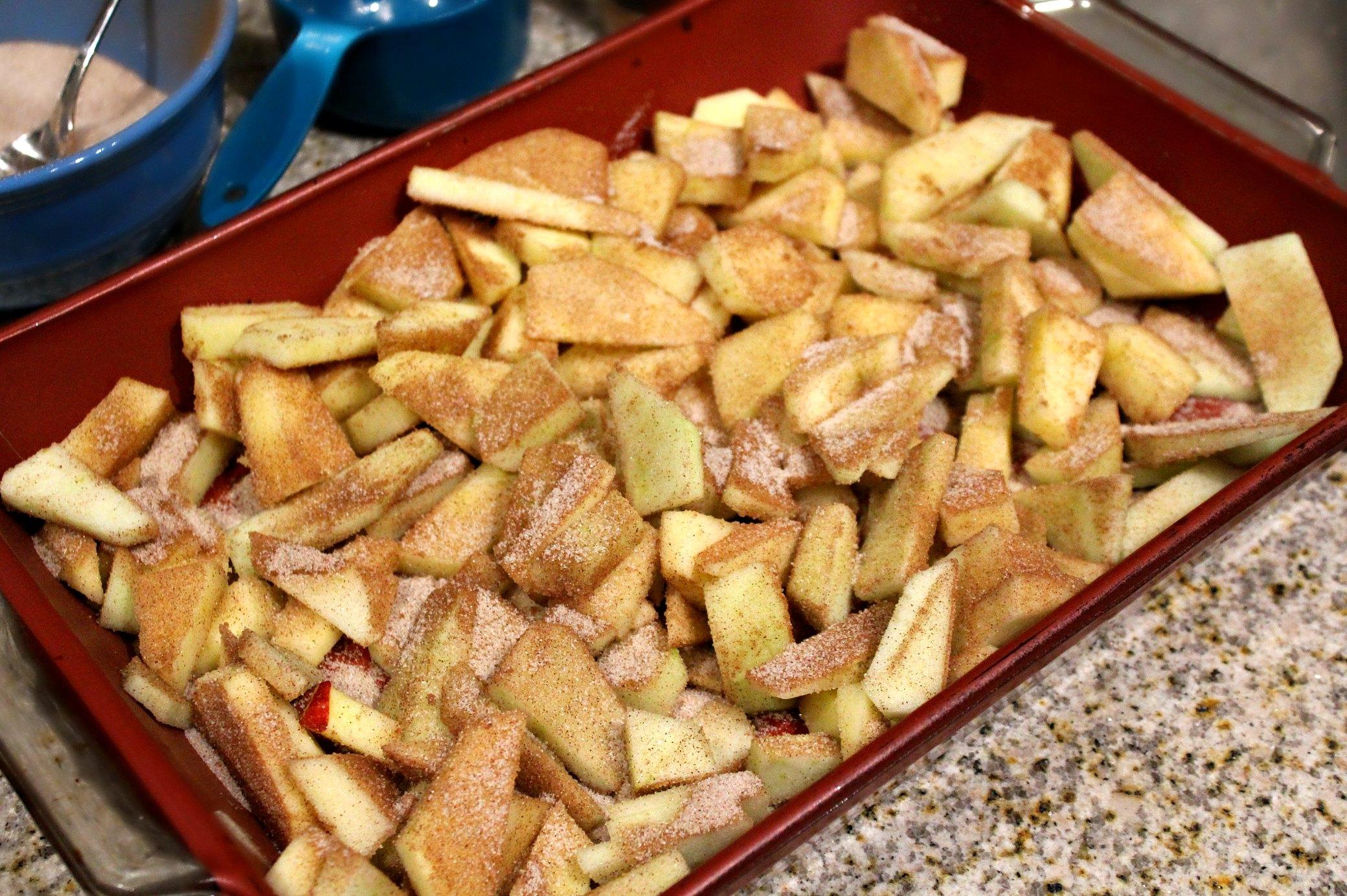 Simply THE BEST Apple Crisp Recipe