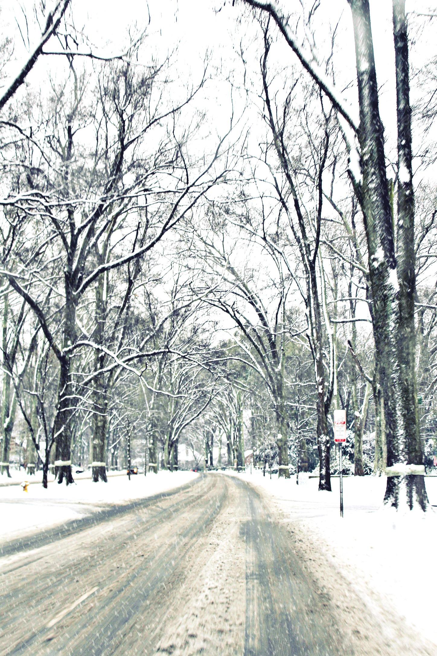 Charlotte NC Snow