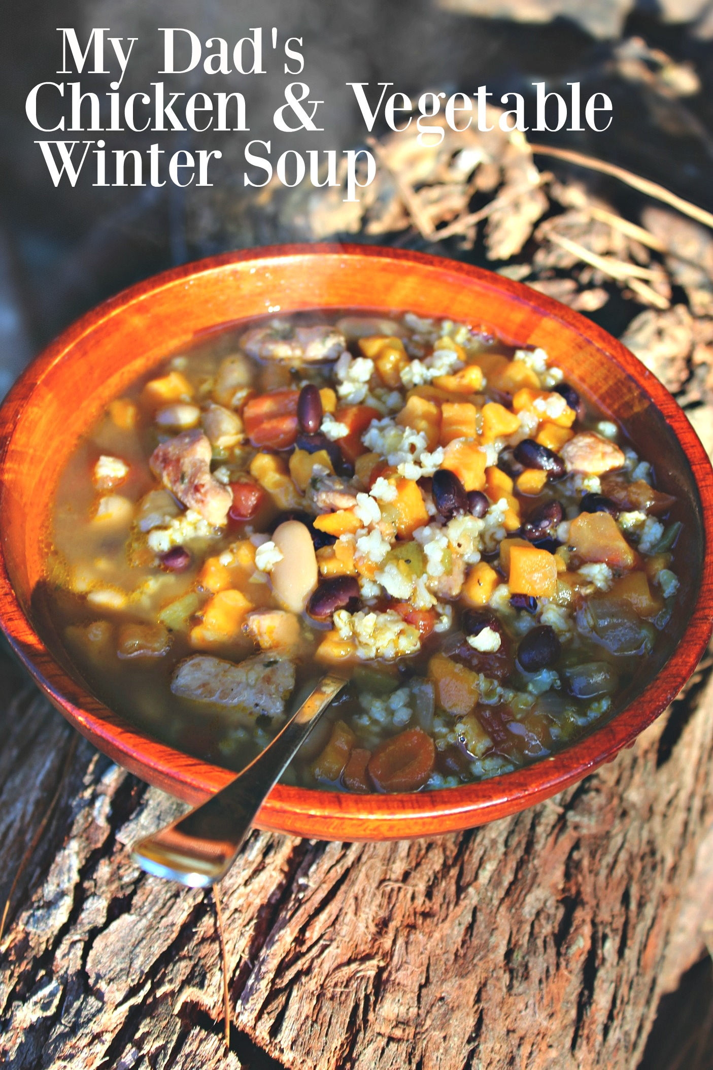 My Dad's Chicken And Vegetable Winter Crockpot Soup