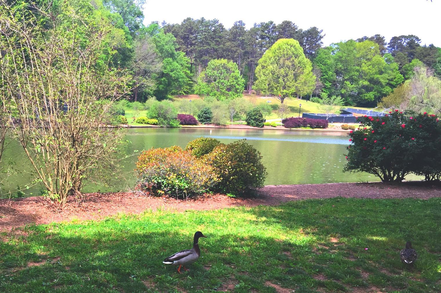Freedom Park Charlotte NC
