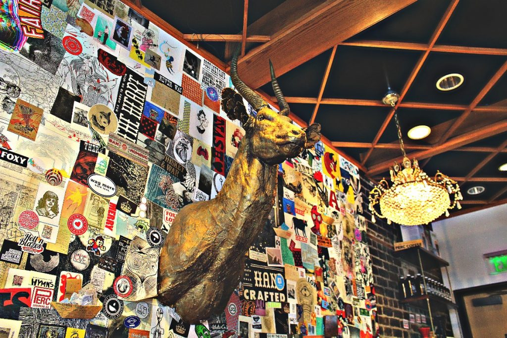 THE COFFEE FOX SAVANNAH GA