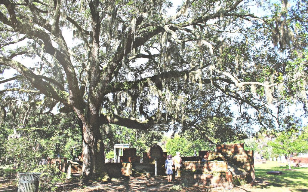The Colonial Park Cemetery Savannah Georgia