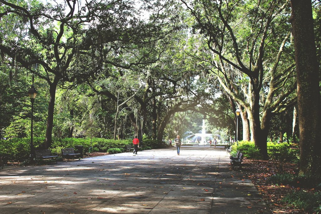 We made our way to Forsyth Park. It's made up of 30 acres in the historic district of Savannah. It has the famous fountain you see in almost all of the Savannah photos. This is a beautiful place to walk and the trees hang over the paths.