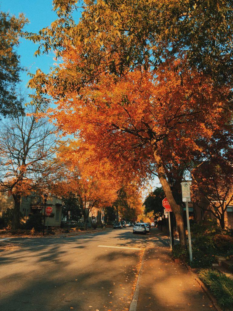 Uptown Charlotte NC