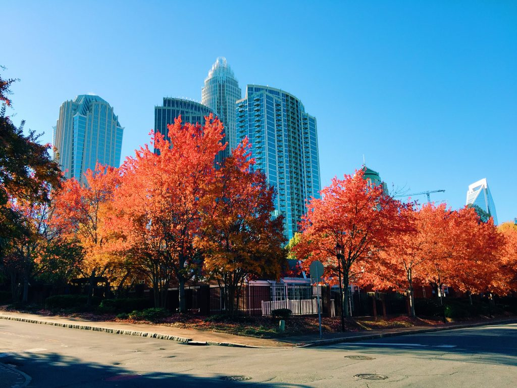 the fourth ward uptown charlotte nc