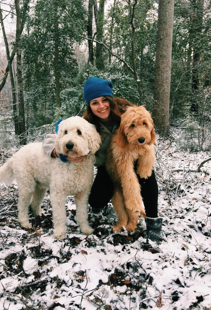 It' snowing in Charlotte, NC | One of my longest recap blogs! + workouts