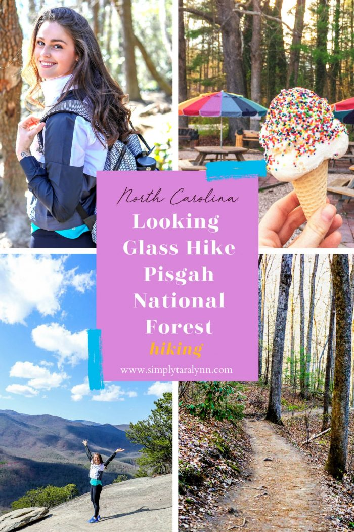 3rd Annual Hiking Trip to Pisgah National Forest + Video ☀️