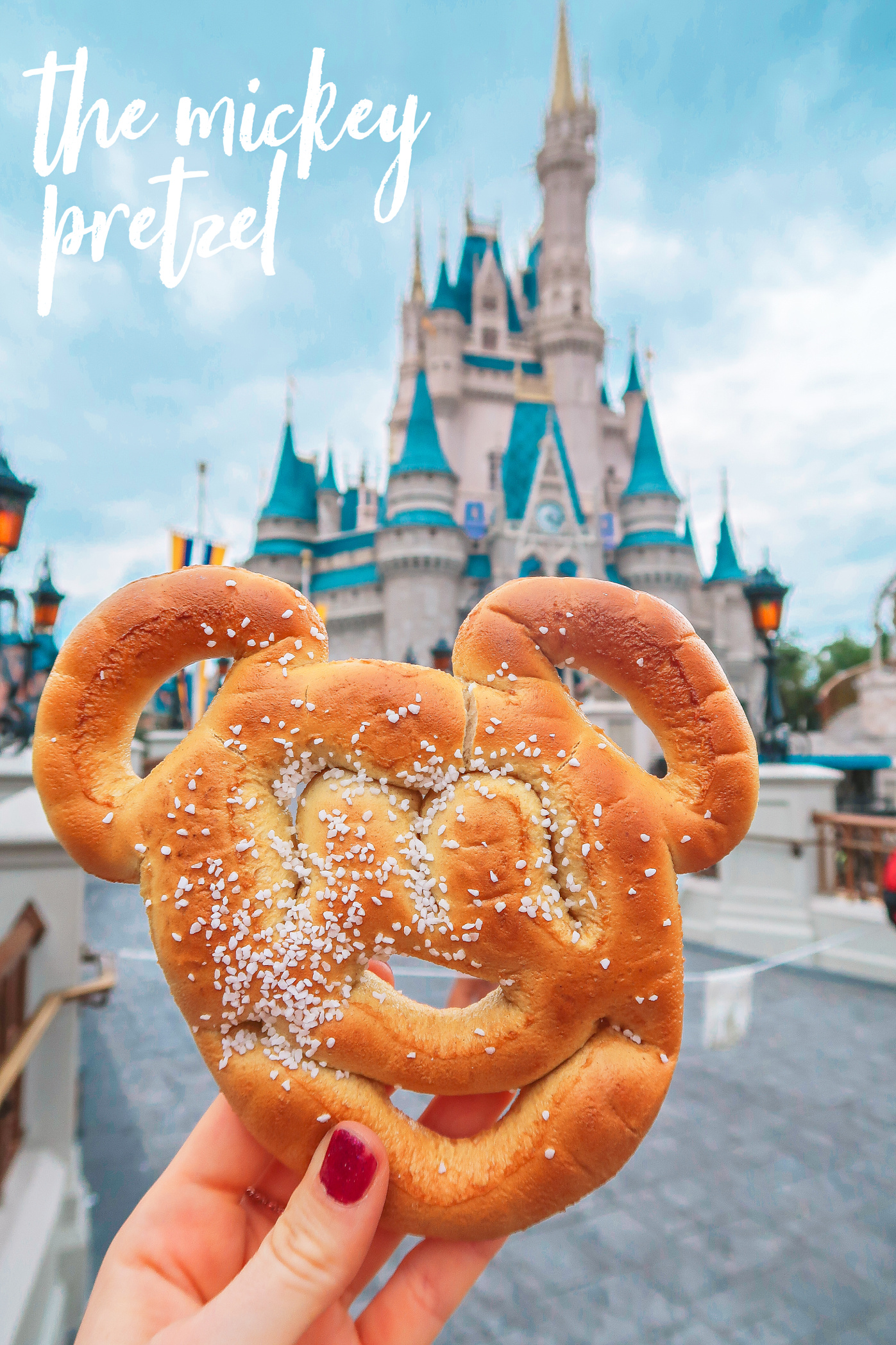The Mickey Mouse Pretzel Walt Disney World Magic Kingdom