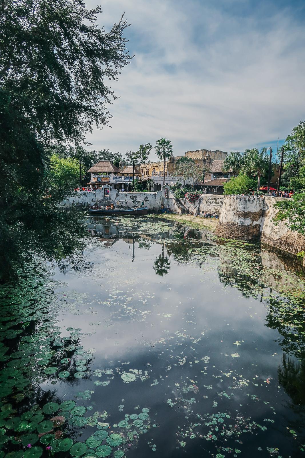 Disney's Animal Kingdom Travel Guide Eats Food