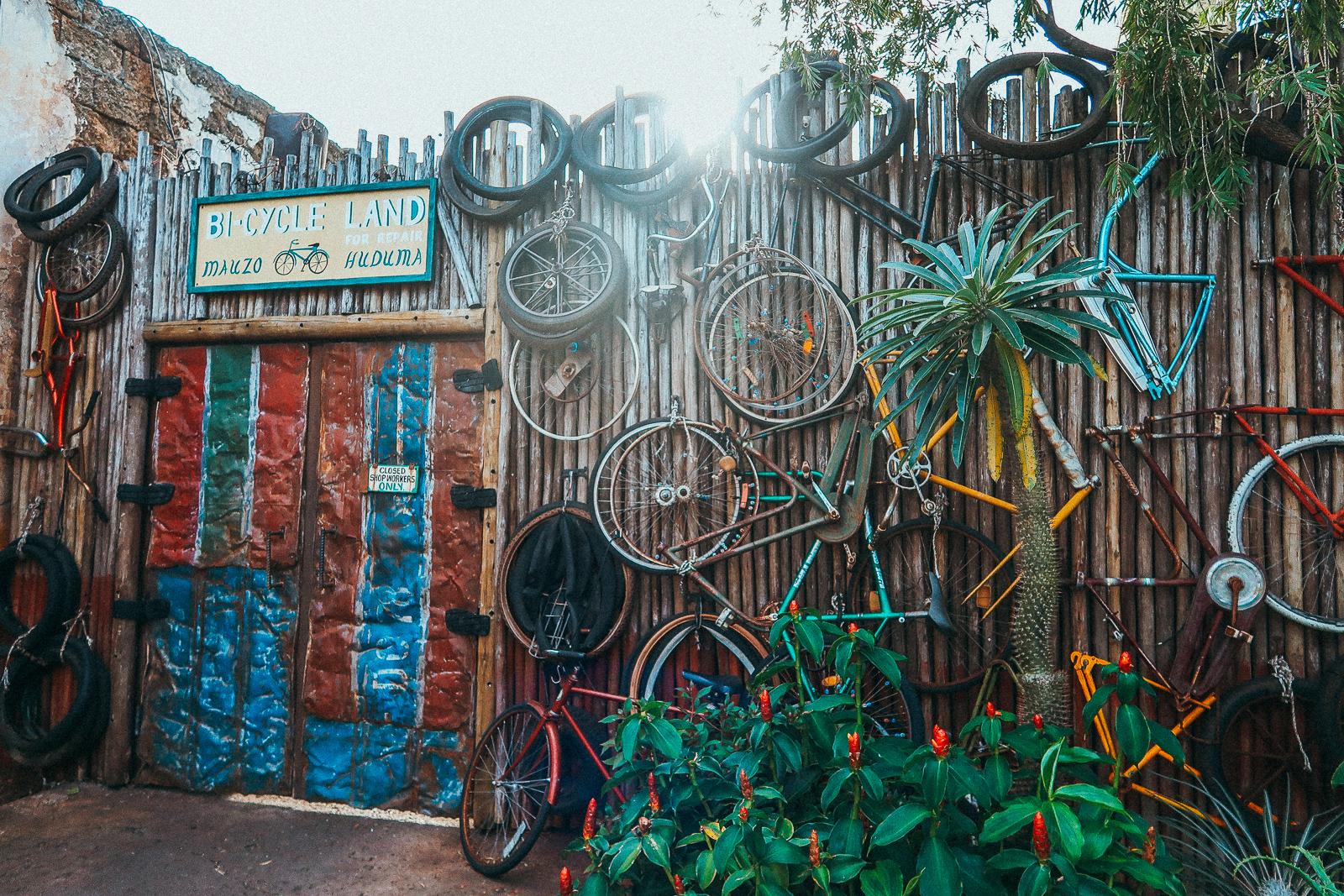 Insta-worthy Instagramable Spots Walls Disney World Animal kingdom