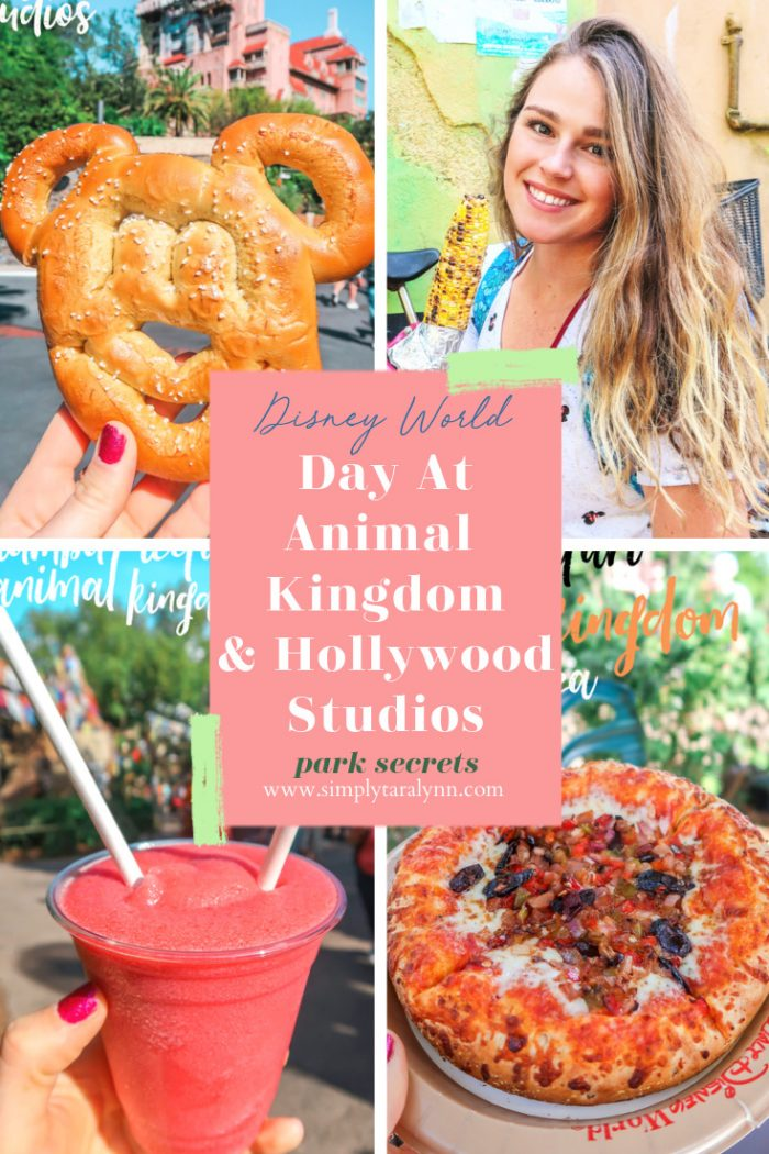 Our Day at Disney's Hollywood Studios & Animal Kingdom