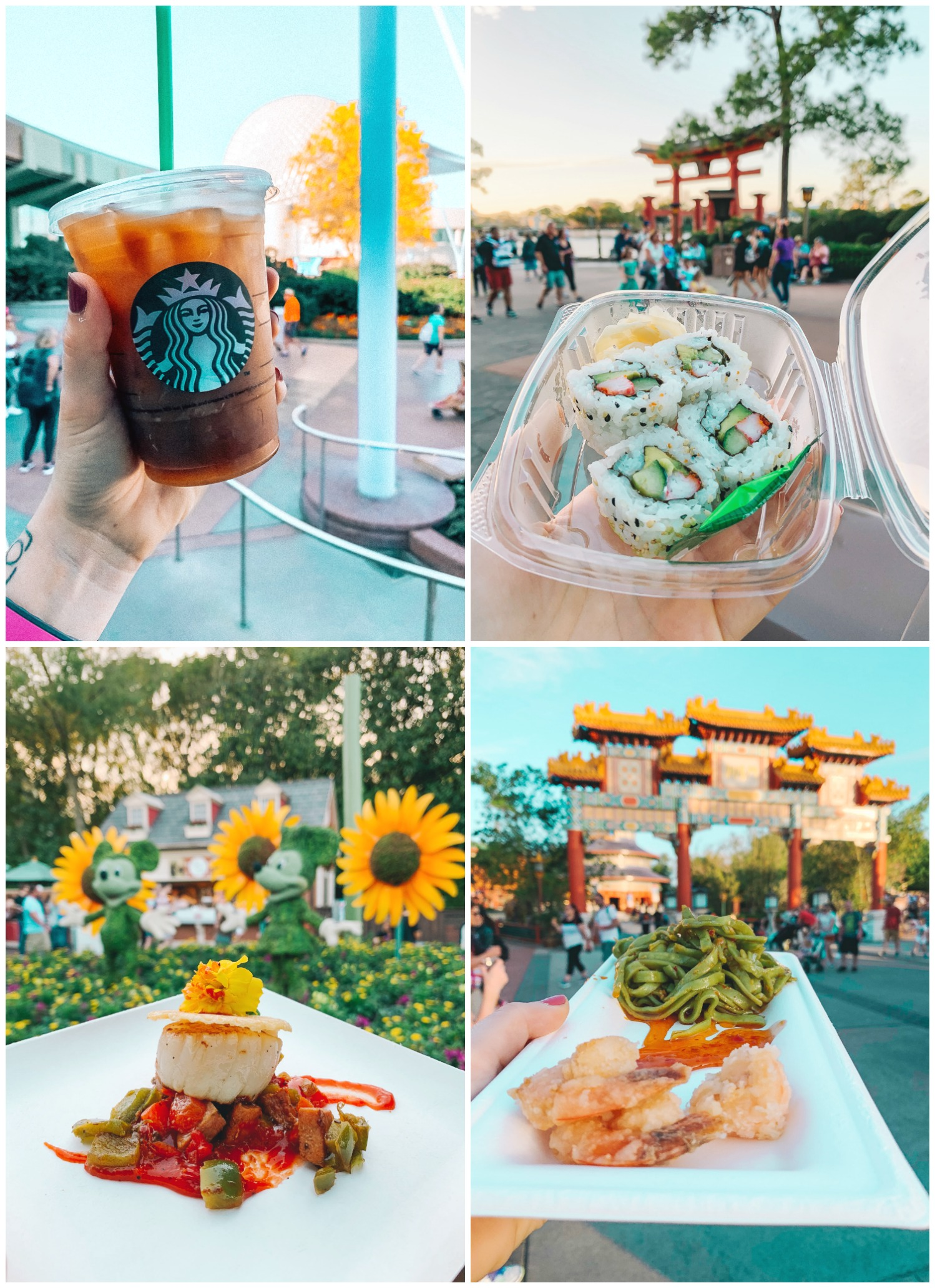 Epcot Food Walt Disney World Itinerary
