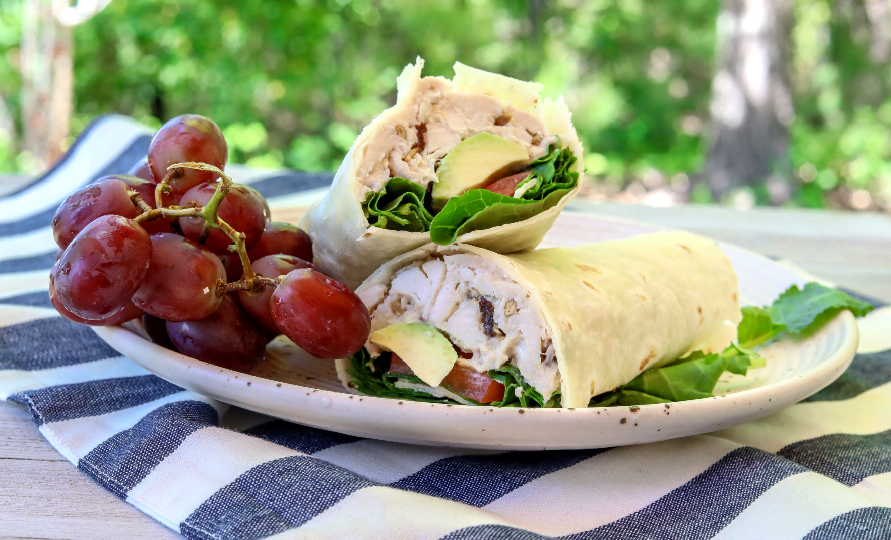 Healthy Dairy Free Chicken Salad Recipe Light
