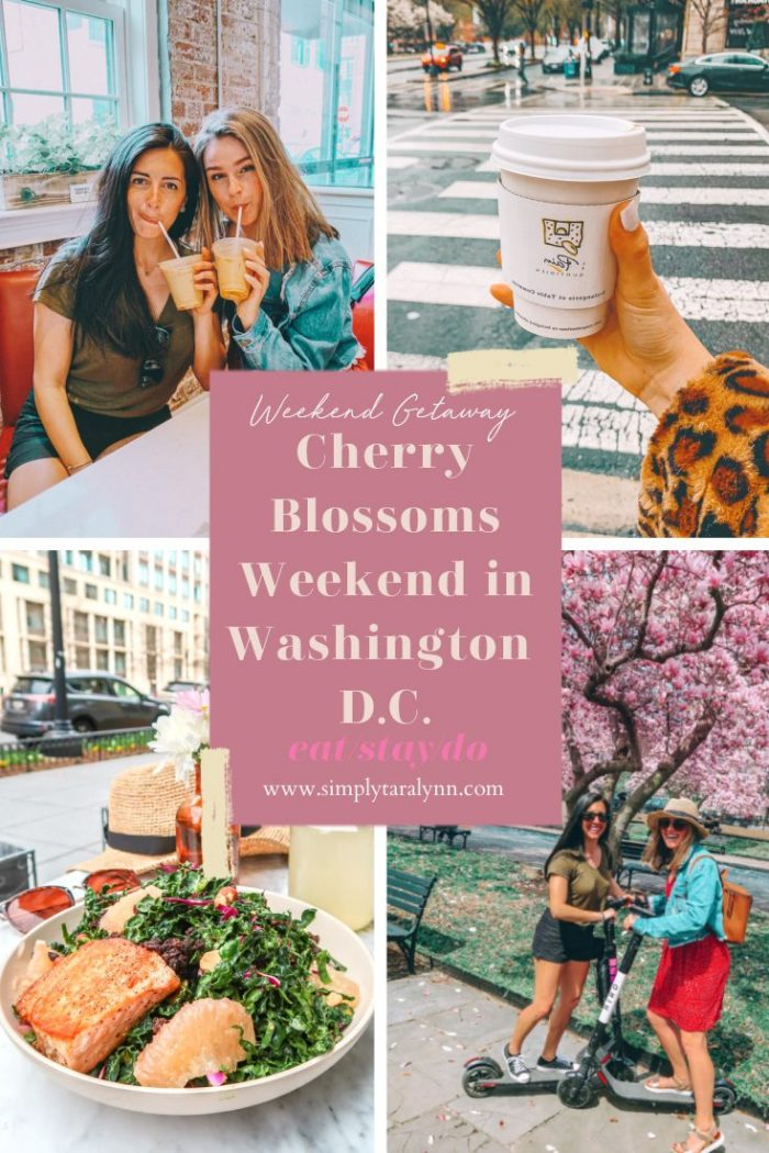Our Weekend In Washington D.C. + Cherry Blossom Season!