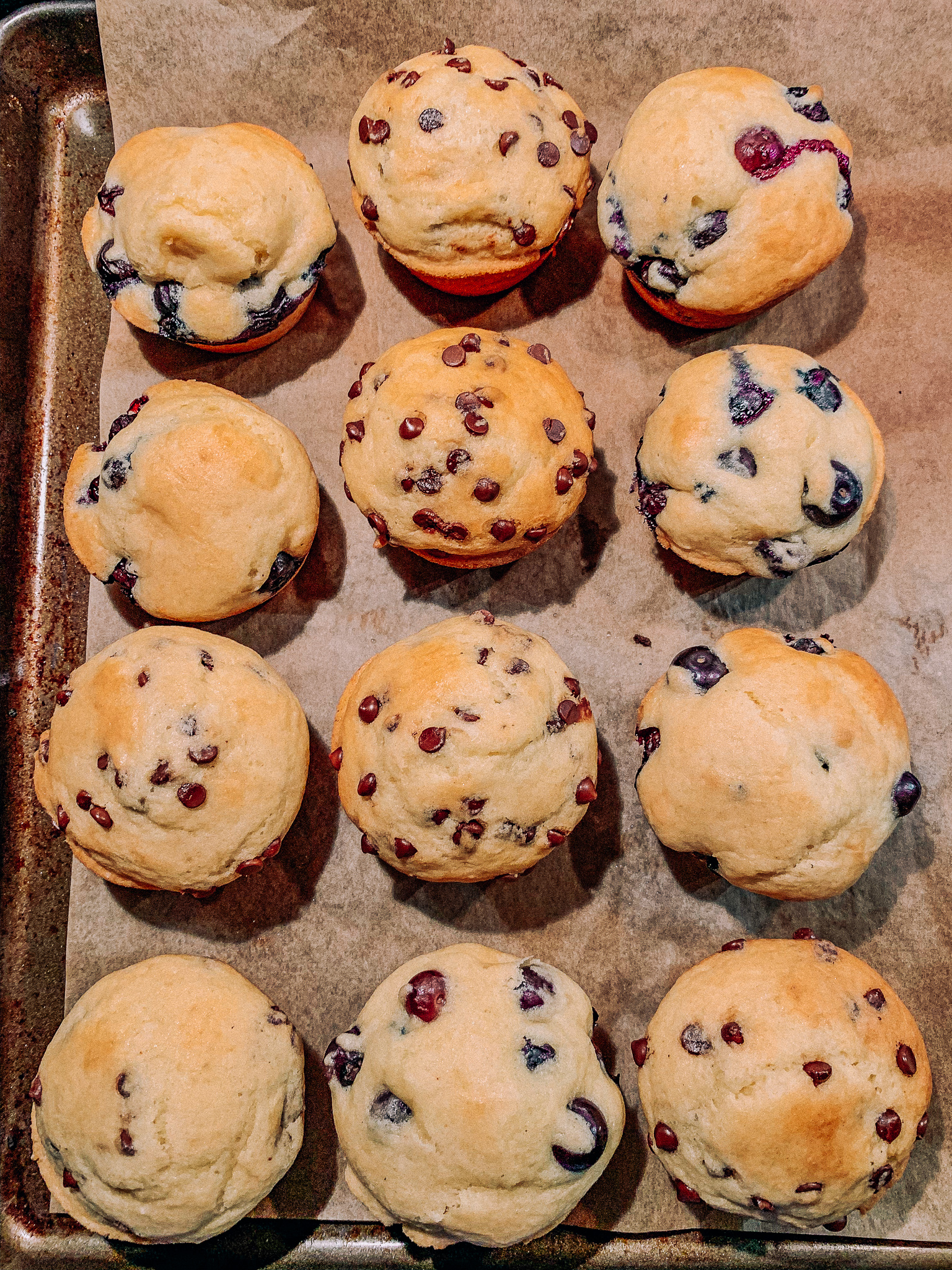 dairy free gluten free blueberry muffins chocolate chips