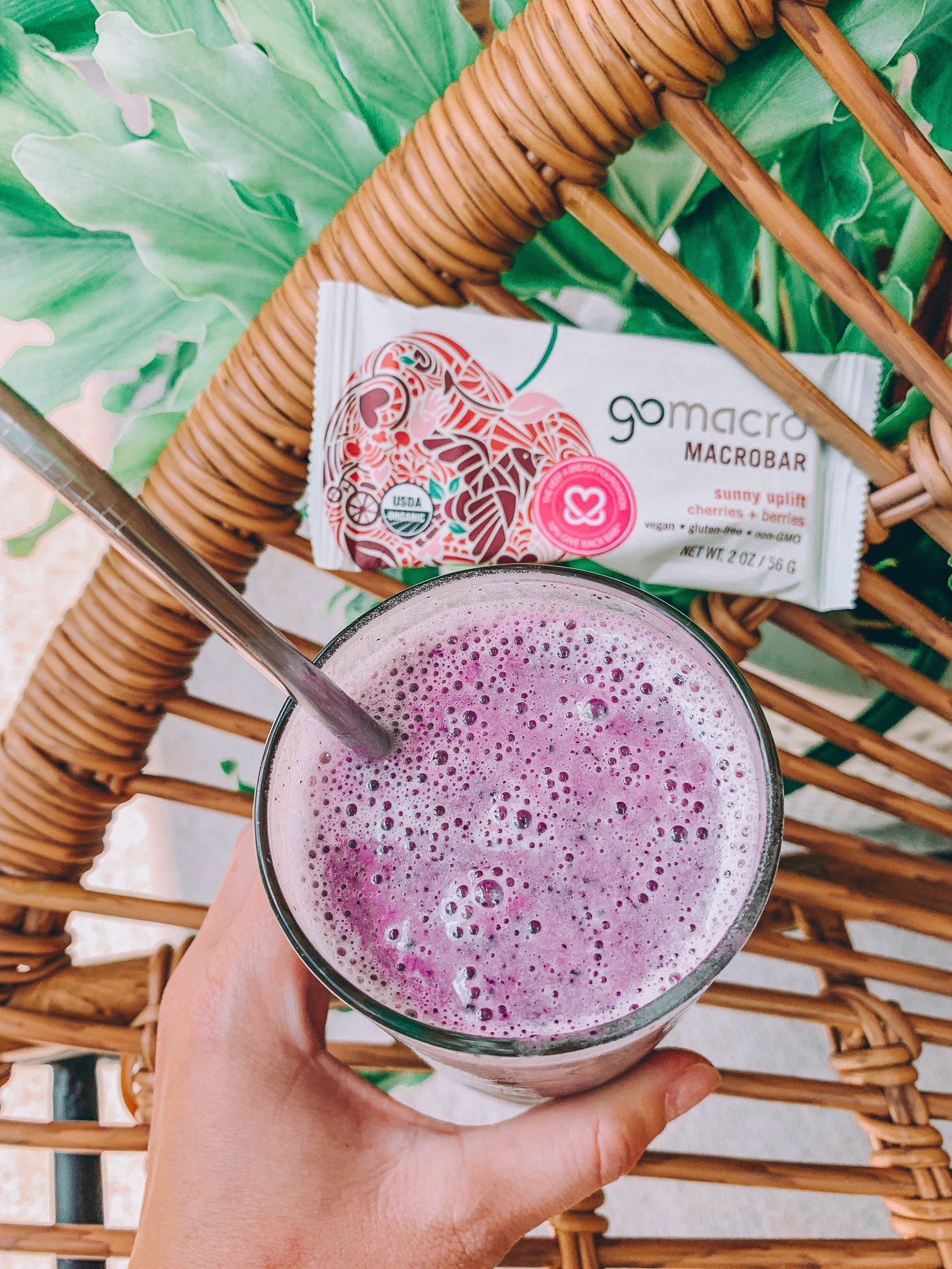 go macro bar pre run fuel healthy vegan gluten free dairy free protein smoothie delicious low calorie high protein refreshing summer health get fit lifestyle