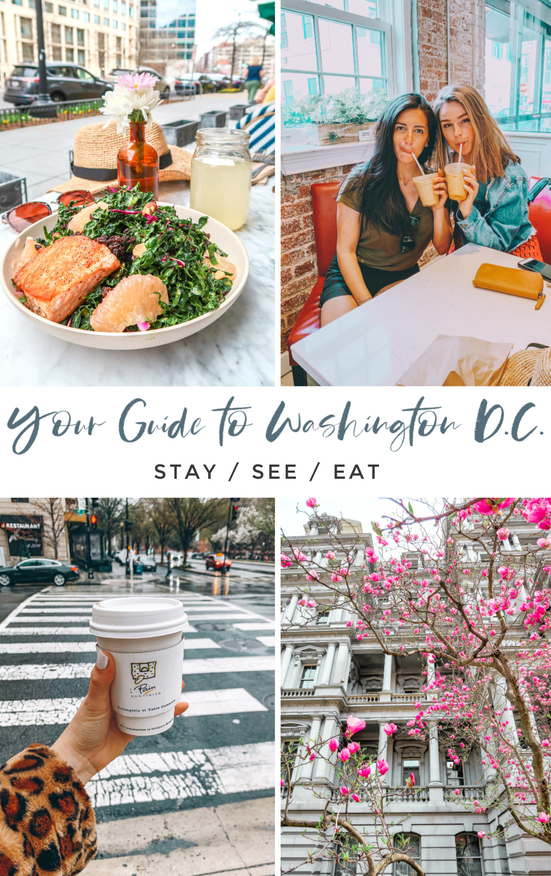 your guide to Washington DC, travel, cherry blossoms, where to eat, where to stay, metro, Georgetown, White House, food, healthy, Alexandria, getaway, fun, coffee