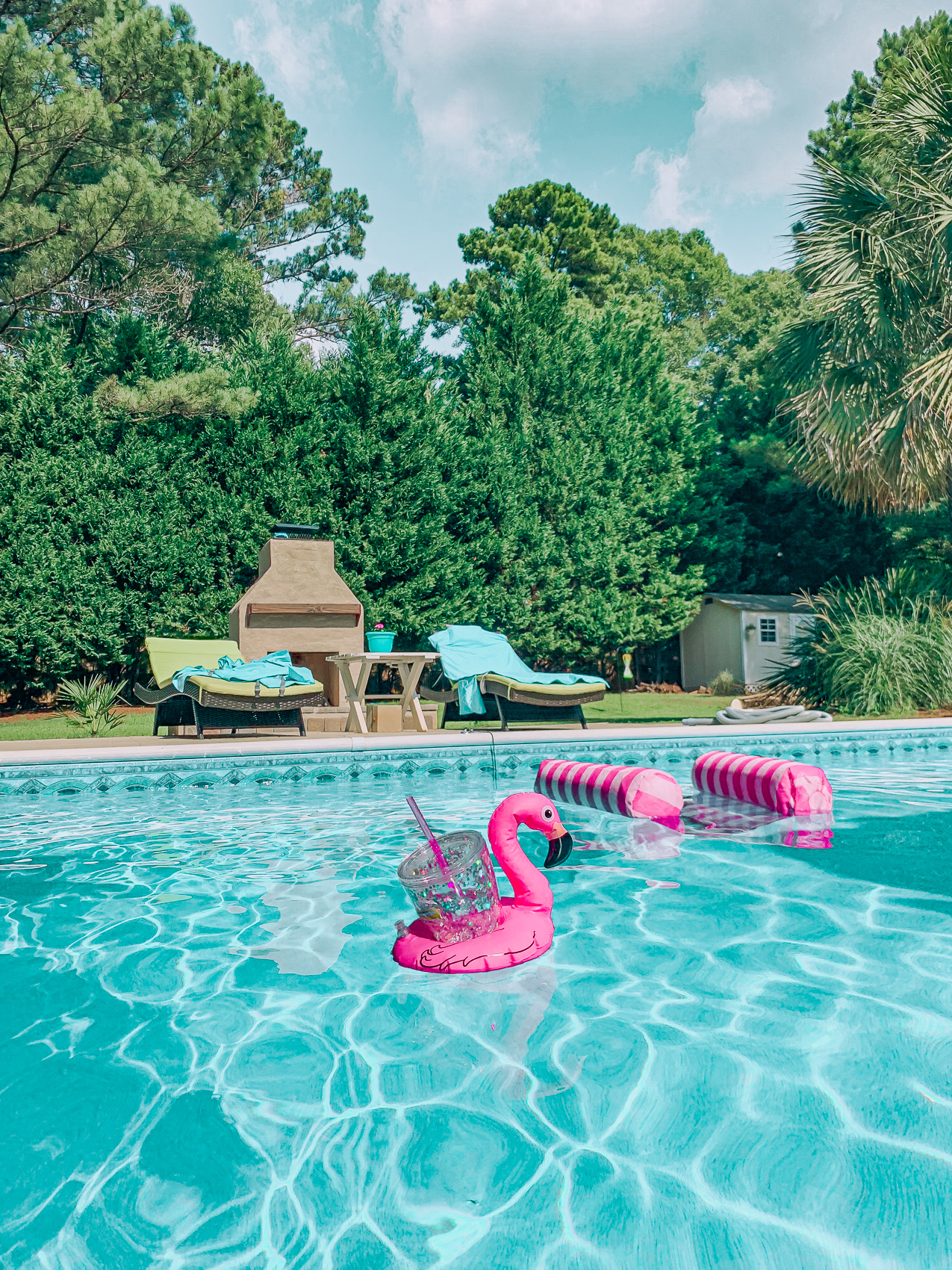 summer time, pool side, lifestyle blogger, recap weekly, day in the life, week in the life, flamingo float, summer fun, life, pool side, fun fun, party lifestyle, cherries, food, dinner by the pool, dogs, target, pool floats, backyard, summertime