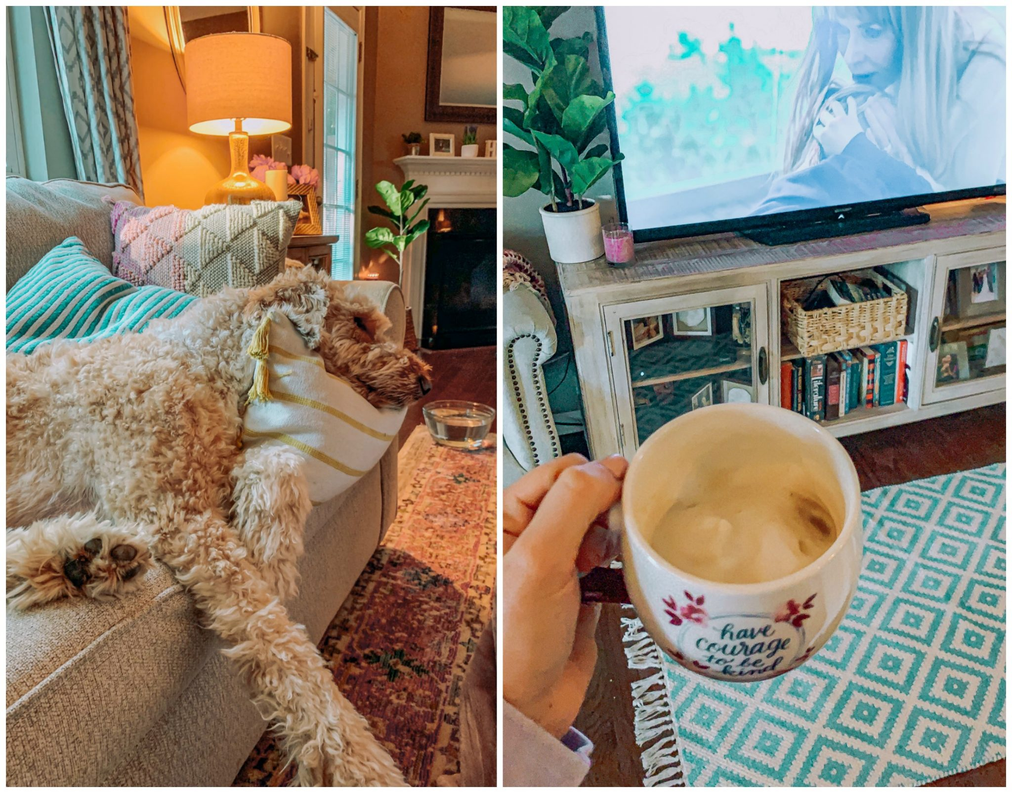 coffee, dogs, home decor, lifestyle blogging, blog, pups, carpet, rugs, home goods