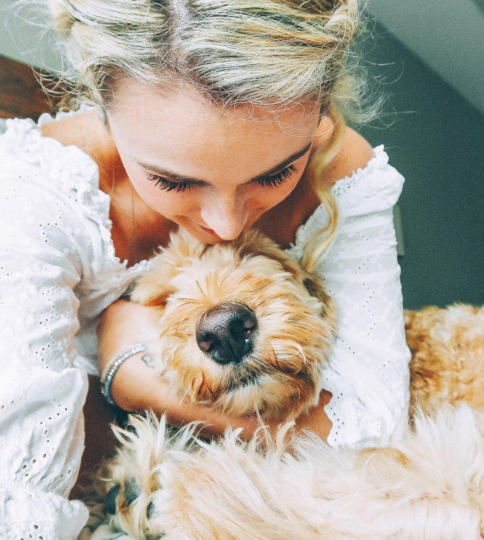golden doodle, Leo, simply taralynn, lifestyle, love
