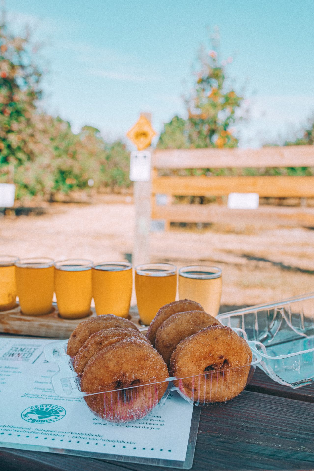 York South Carolina, York, sc, windy hill orchard, fort mill, south Carolina, Charlotte, apple orchard in Charlotte, apple cider, hard cider, apple cider donuts, fresh donuts, farm, pumpkin patch,